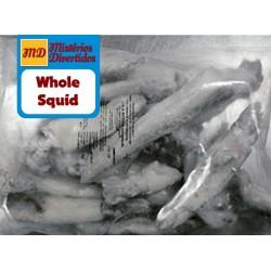 Whole Squids