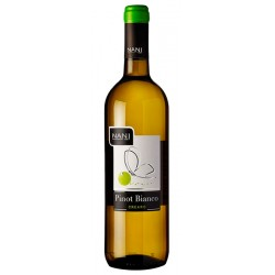 White Wine Pinot Bianco Veneto IGT